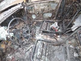 palanut_auto