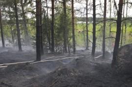 metsäpalo Rasilan takana kallio letku palanut maasto vihreä pelto